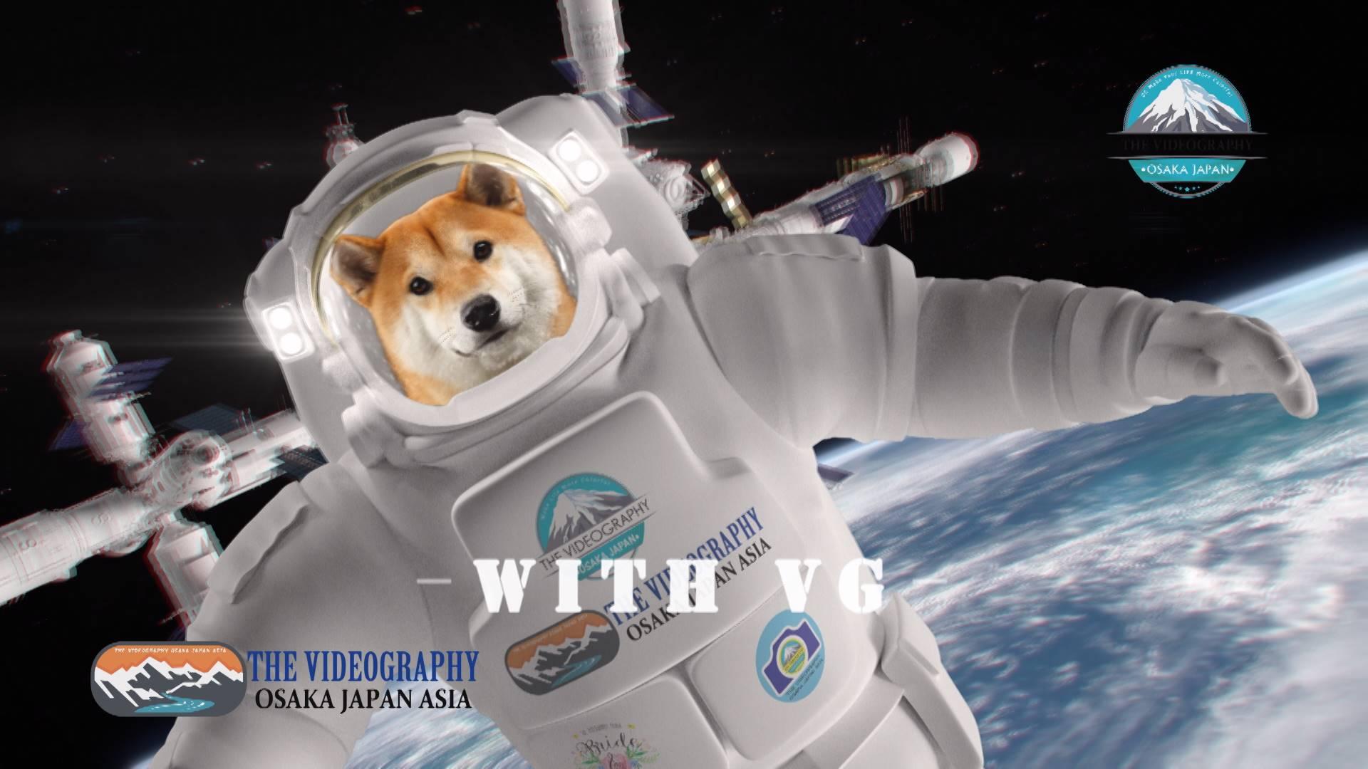 宇宙にファーストペンギンに捧げるプロモーションビデオ